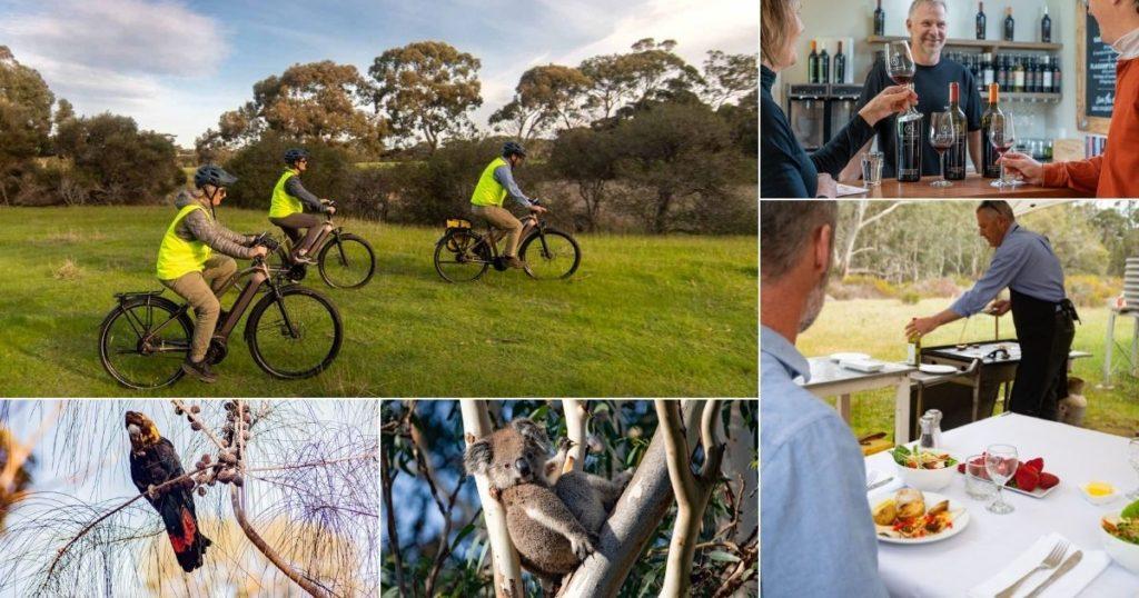 Gin, Wine & Wildlife E-Bike Tour 2 - Exceptional Kangaroo Island E-Bikes