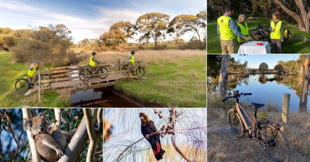 Sunset Wildlife E-Bike Tour 2 - Exceptional Kangaroo Island E-Bikes